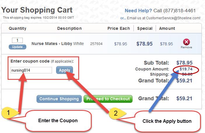 How to Enter the Promo Code Screenshot